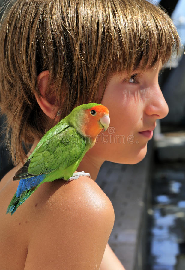 Child with Miniature Parrot royalty free stock photos