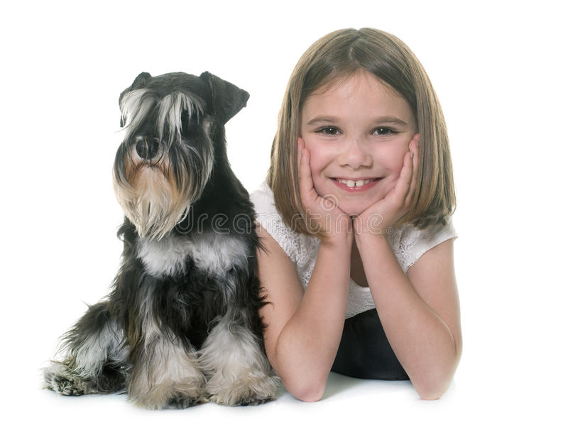Child and miniature schnauzer stock images