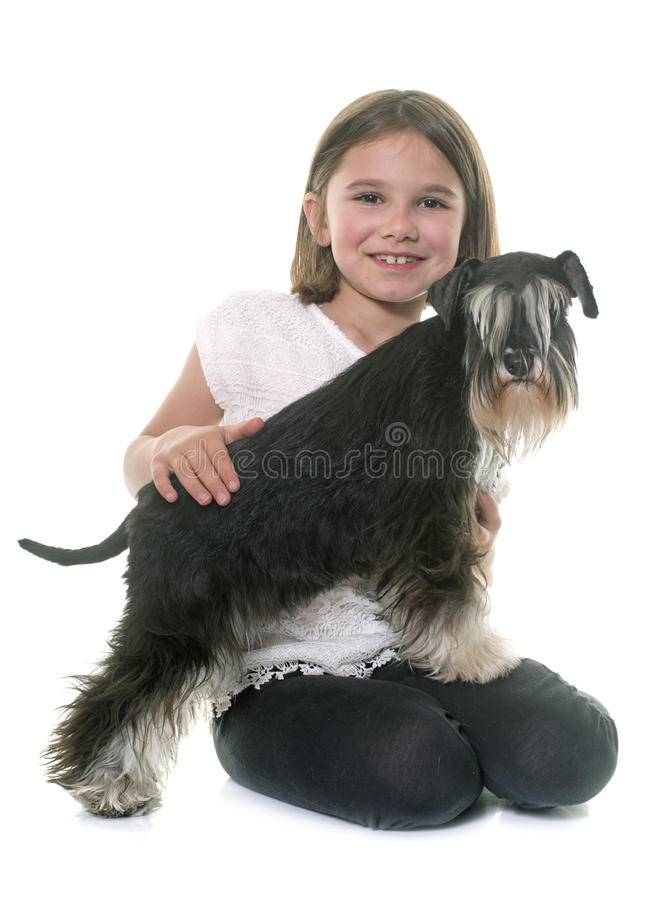 Child and miniature schnauzer royalty free stock photos