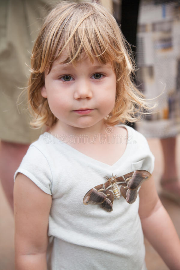 Child with moth Samia Ricini butterfly on her shirt stock images