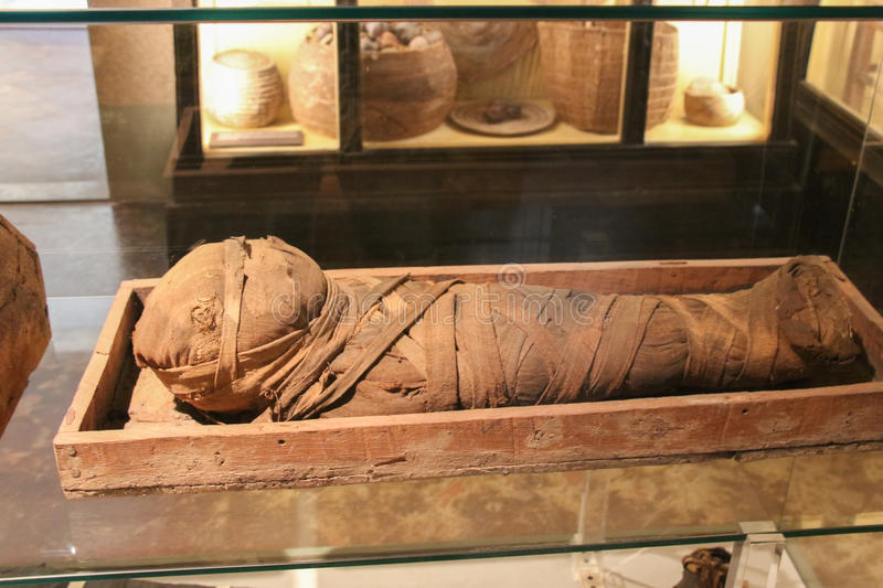 Child mummy. The National Archaeological Museum of Florence. Toscana. Italy. Italy, Florence - October 02 2016: view of the child mummy in the National royalty free stock photography
