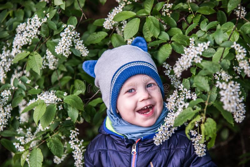 Child near blooming tree, happy face stock photography