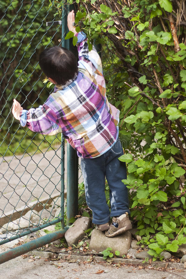 Child Opening Gate Stock Image