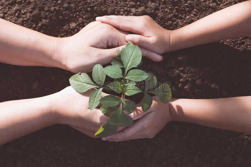 Child and parent hand planting young tree on black soil together. As save world concept stock photography