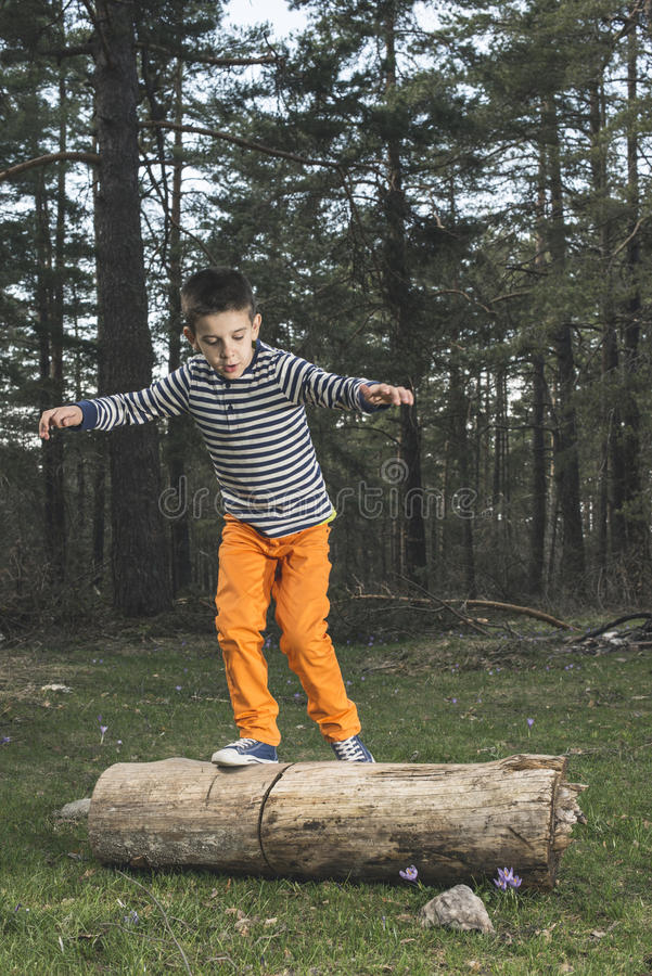 Child play in the forest.  royalty free stock image