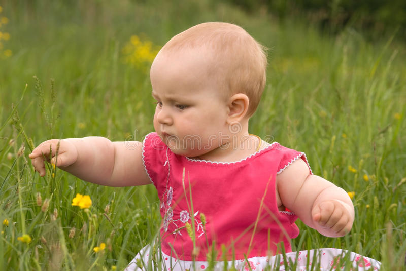The child is played a lawn. stock photos