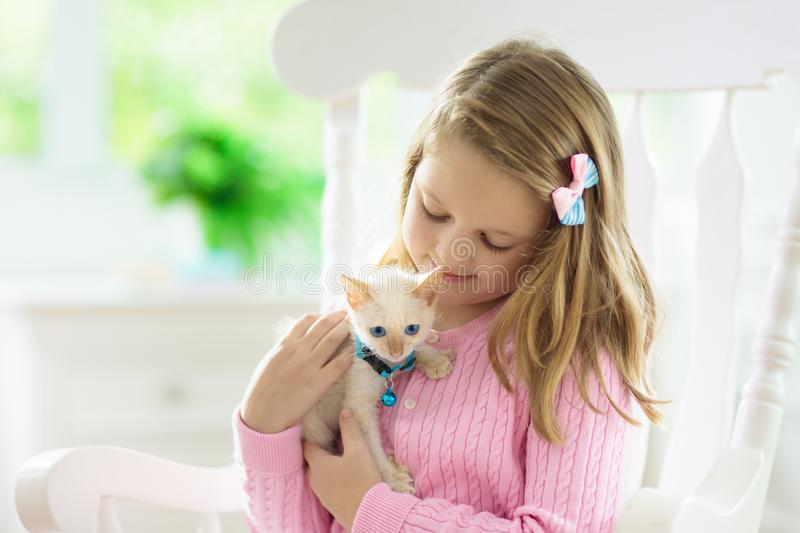 Child playing with baby cat. Kid and kitten royalty free stock images