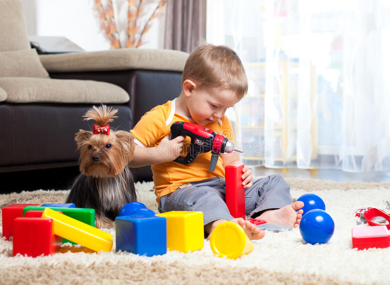 Child playing with building blocks with dog indoor stock photo