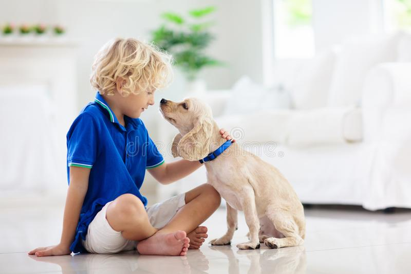 Child playing with dog. Kids play with puppy royalty free stock image