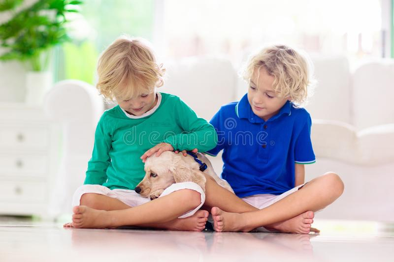 Child playing with dog. Kids play with puppy royalty free stock photo