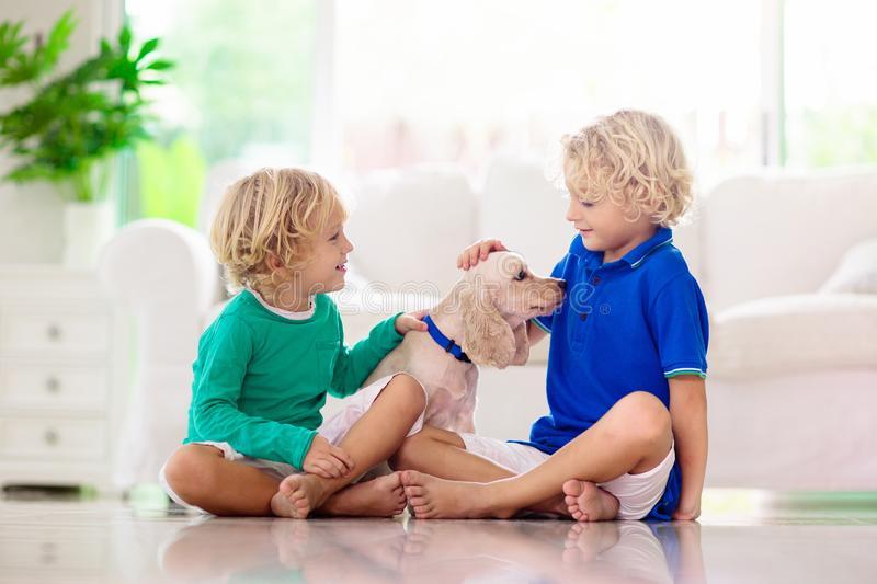 Child playing with dog. Kids play with puppy royalty free stock photos