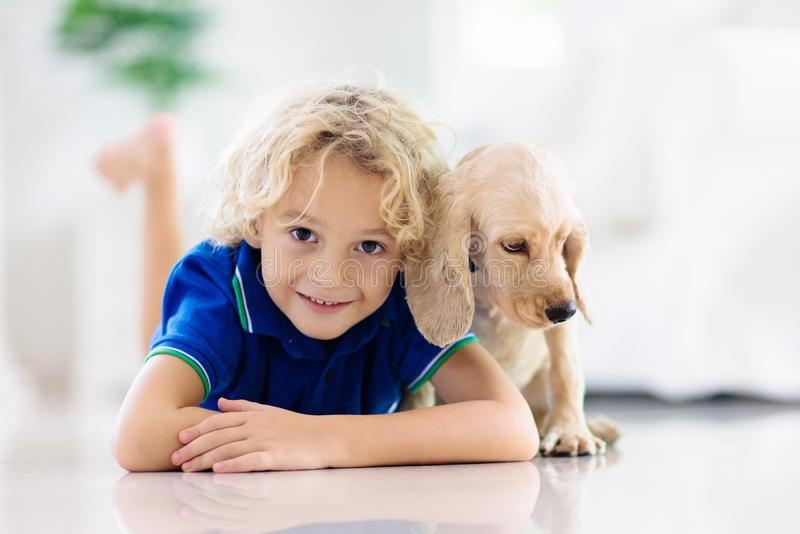 Child playing with dog. Kids play with puppy stock photo