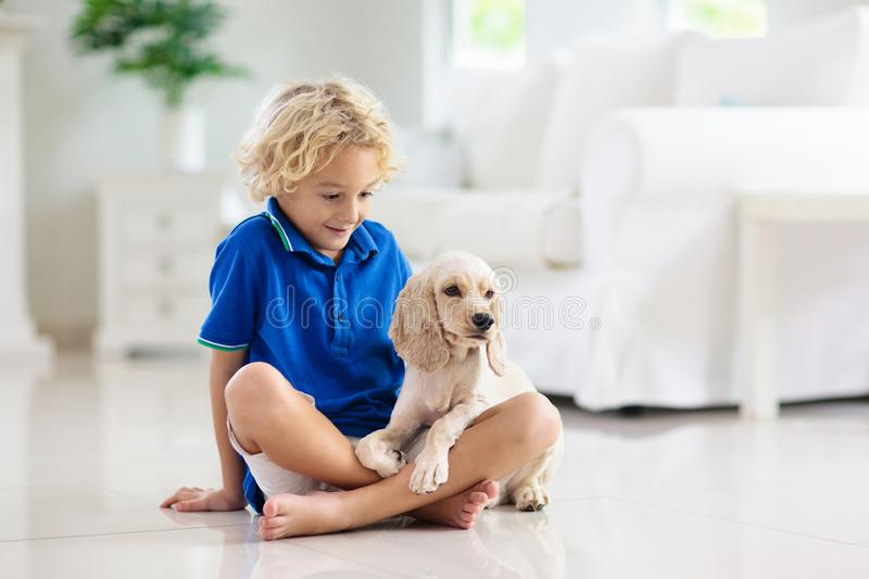Child playing with dog. Kids play with puppy royalty free stock photography