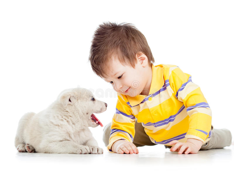Child playing with puppy dog. Child boy playing with puppy dog stock photos