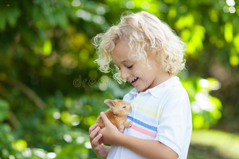 Child playing with white rabbit. Little boy feeding and petting white bunny. Easter celebration. Egg hunt with kid and pet animal. Children and animals. Kids stock photo