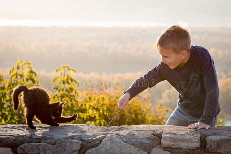 A child plays with a kitten. Fun photo. Communication with animals. Joyful boy. Autumn bright day. Beautiful landscape in the royalty free stock photos
