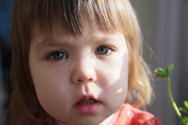 Child portrait closeup with open mouth talking, little girl grey eyes royalty free stock photography