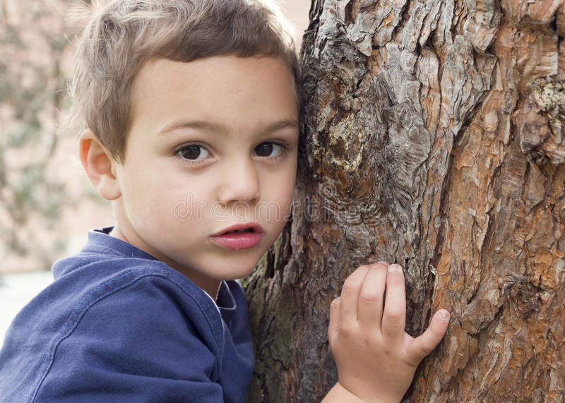 Child portrait by tree. Portrait of a child boy holding and hugging tree trunk royalty free stock image