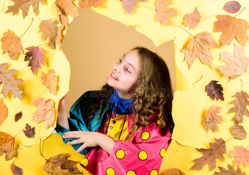Child in positive mood. season forecast. kid in autumn leaves. little girl in trendy raincoat. little girl in rain royalty free stock photos