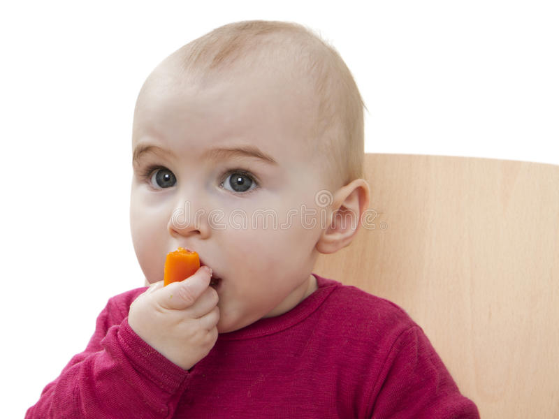 Download Child in red shirt eating stock image. Image of healthy - 23489413