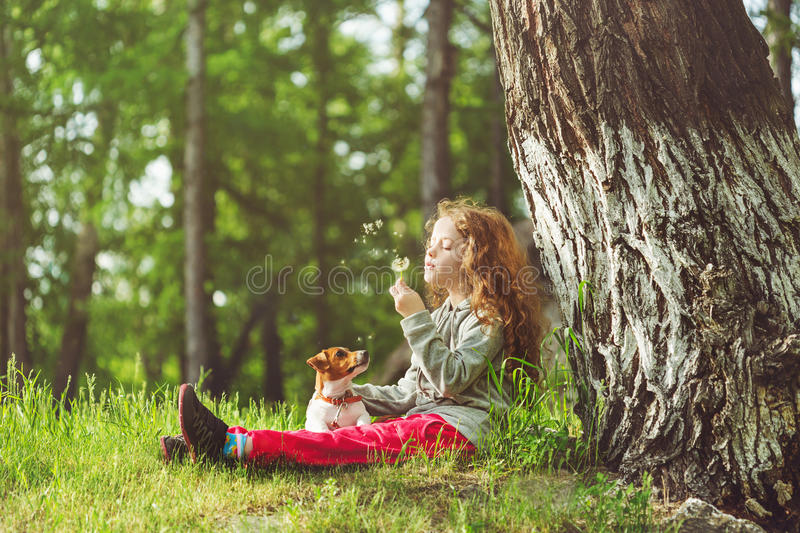 Child resting in a park under a large tree. Little girl and her puppy enjoy flying dandelions. Child resting in a park under a large tree royalty free stock image