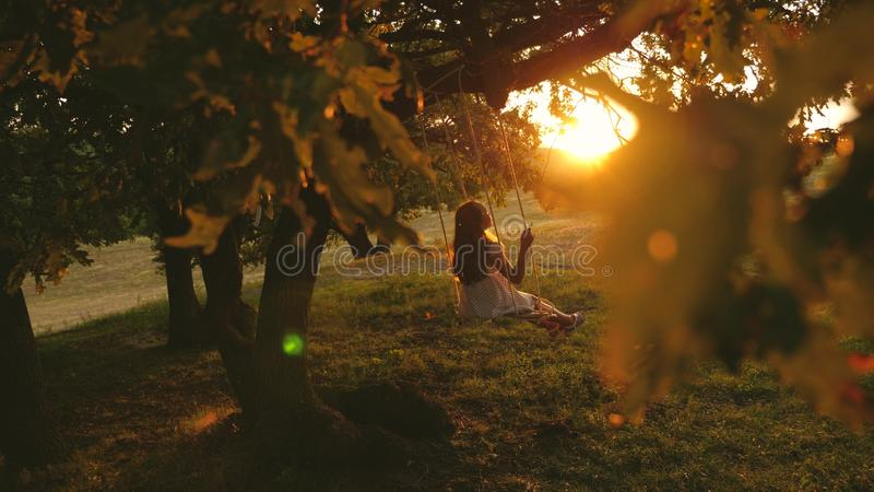 Child rides a rope swing on an oak branch in park sunset. girl laughs, rejoices. young girl swinging on a swing under a. Child rides a rope swing on an oak stock photography
