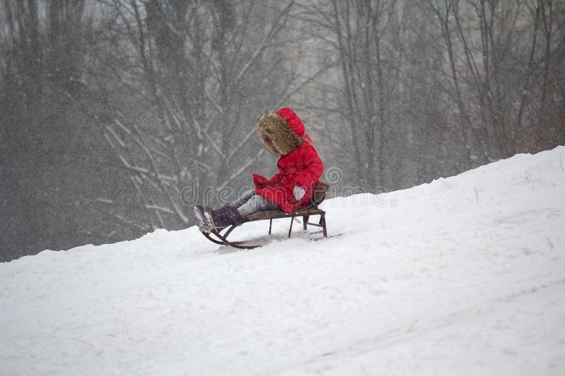 Child rides a sled. In the winter stock photos