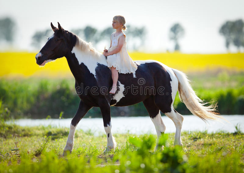 Child riding horse in the meadow stock image