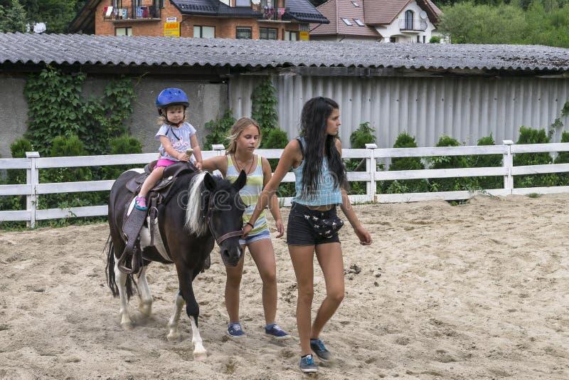 Child riding pony stock photography