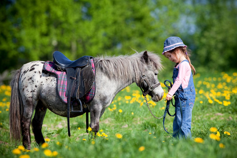 Child riding a small horse royalty free stock photography