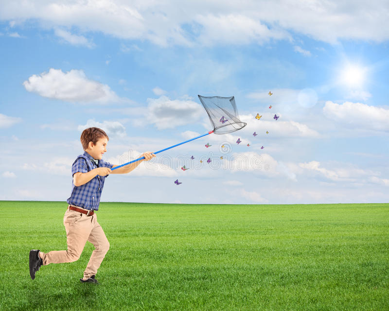 Child running and catching butterflies with net on a field. Full length portrait of a child running and catching butterflies with net on a field royalty free stock photography