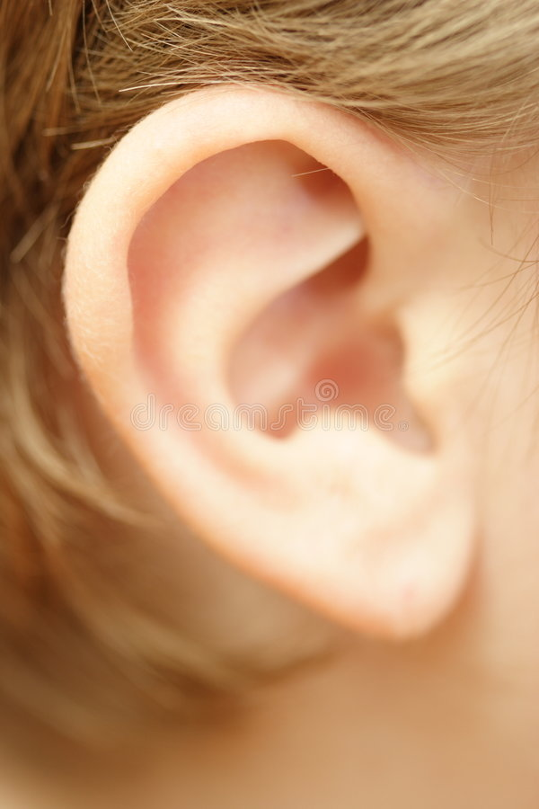 Free Child S Ear Stock Photography - 2773052