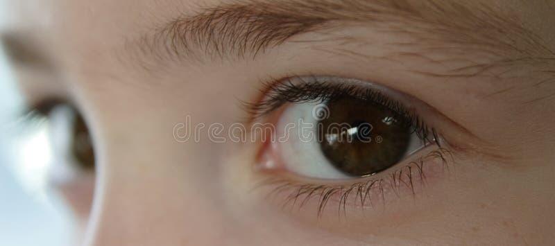 Child's eyes royalty free stock photography