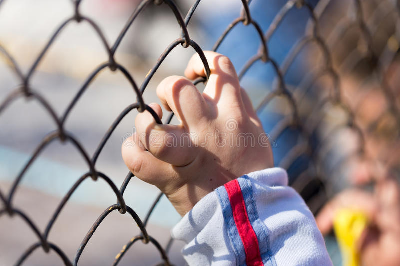 Child`s hand on a grid of a metal fence royalty free stock photo