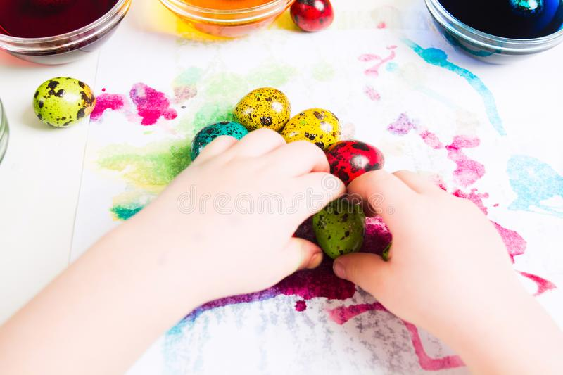 Child`s hands moving colorful easter quial eggs on the tissue royalty free stock images