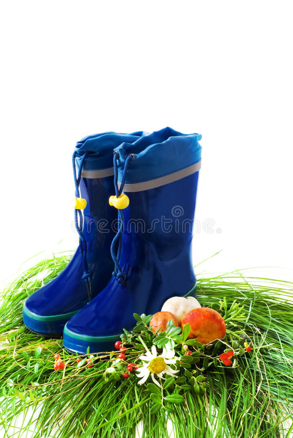 Download Child's Rain Boots Royalty Free Stock Photo - Image: 11236885