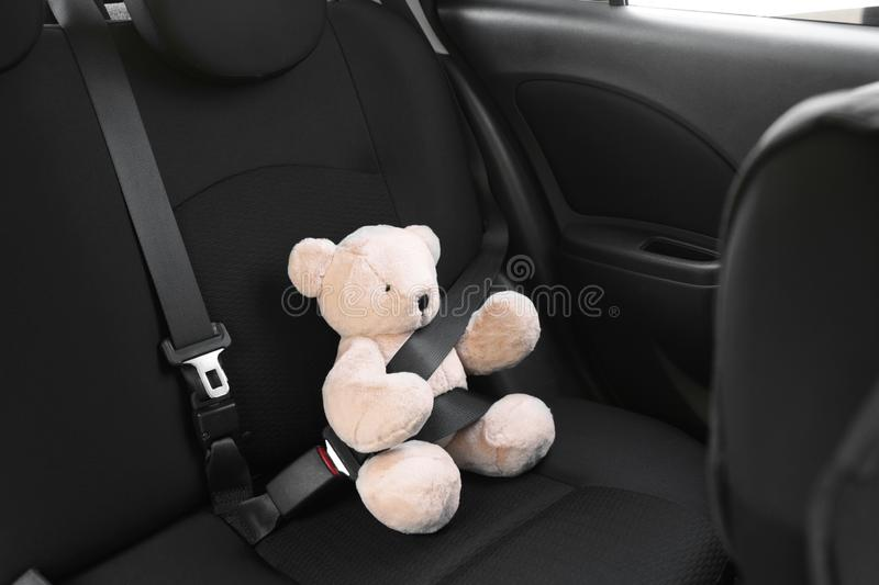 Child`s toy bear buckled with safety belt on car . Prevention of danger. Child`s toy bear buckled with safety belt on car backseat. Prevention of danger royalty free stock images