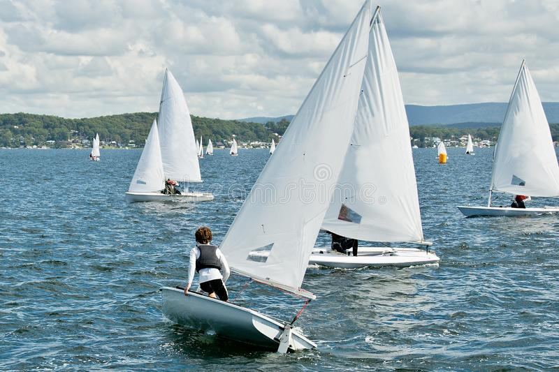 Child sailor on watch in close school children sailboat racing o royalty free stock image