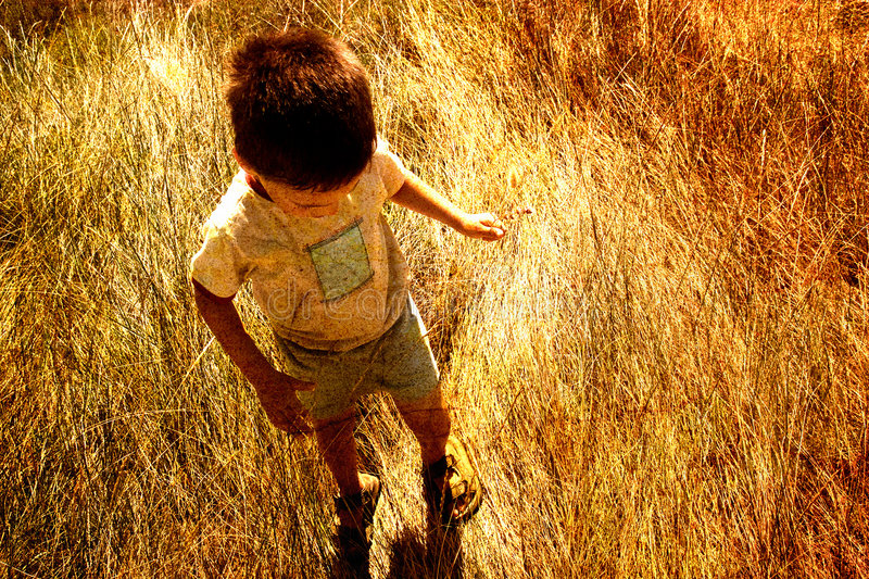 Child in savanna. In the morning, a child in savanna stock images