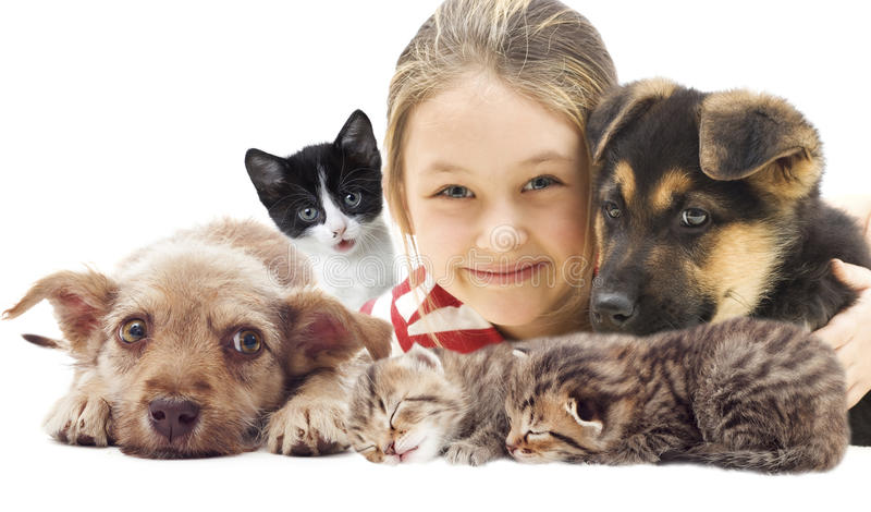 Child and set pets royalty free stock images