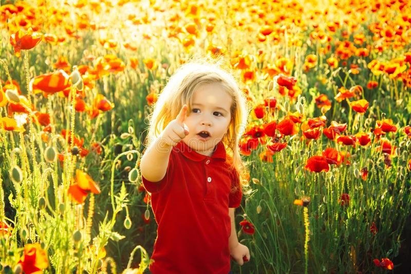Child shows a finger on something ahead. A beautiful boy in a poppy field is happy and shows happy emotions. Red flowers royalty free stock image