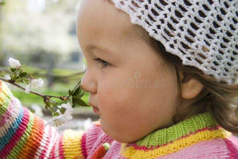 Child sniffs flowering tree