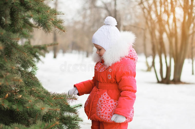 Child in snowy winter near christmas tree stock photography