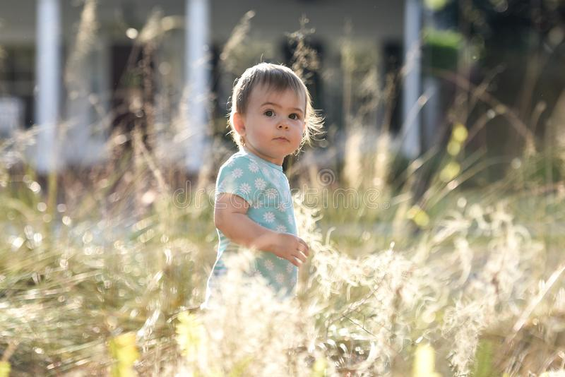 Child standing in tall grass on a sunny day outside stock image