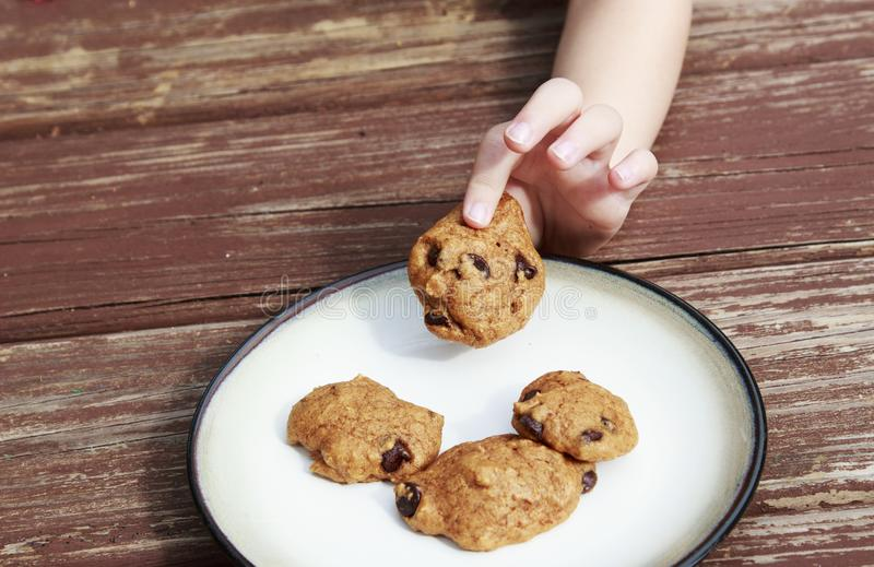 Child stealing a pumpkin chocolate chip cookie from a plate. Child stealing a pumpkin chocolate chip cookie from a plate royalty free stock photo