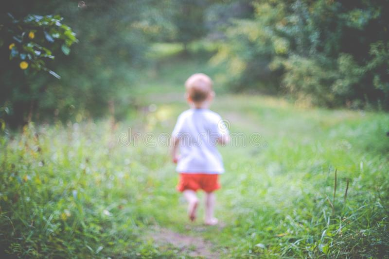 Child in summer forest, blurry bokeh image. Child in summer forest, sunny weather stock photos