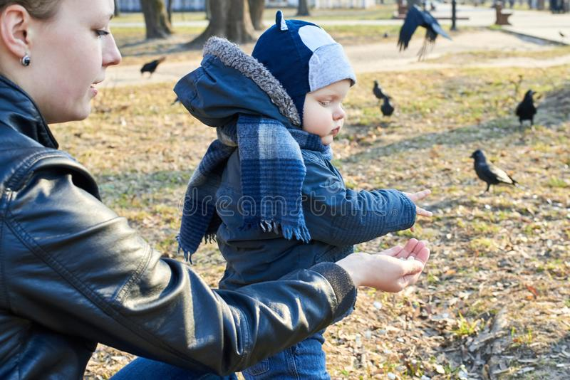 A child takes pumpkin seeds from her mother`s hand to feed the birds in the park in early spring stock photo
