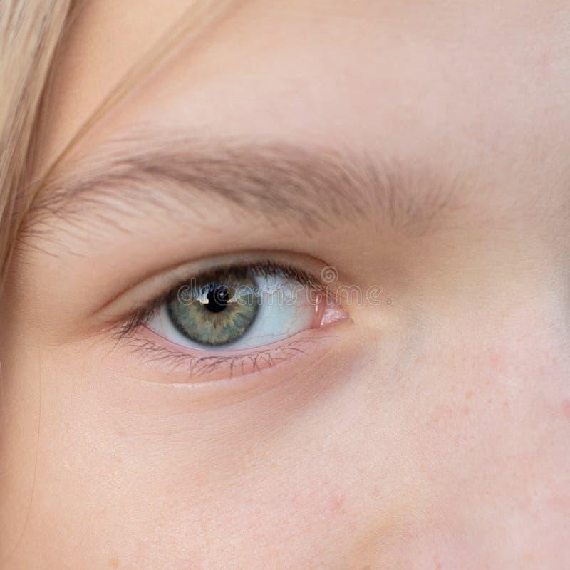 Child or teen girl macro closeup eye stock photography