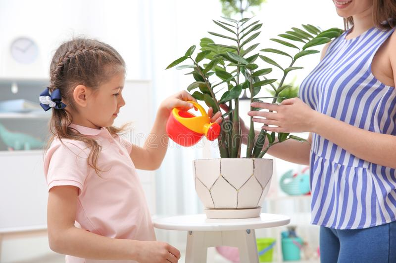 Child with toy watering can helping mother to take care of houseplant at home. Playing indoors royalty free stock photography