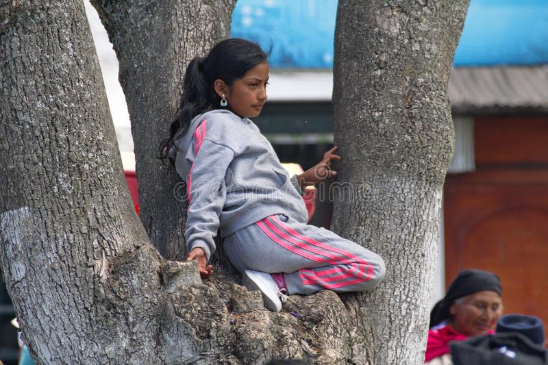 People in the park in Cotacachi. Child in a tree in the park on Day of the Dead in Cotacachi, Ecuador royalty free stock image